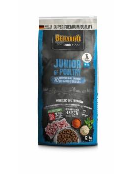 Croquettes Belcando Junior Grain Free